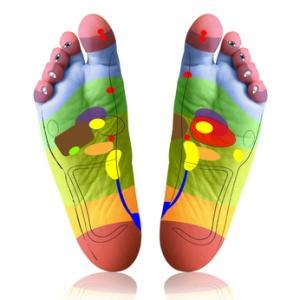 planche des pieds